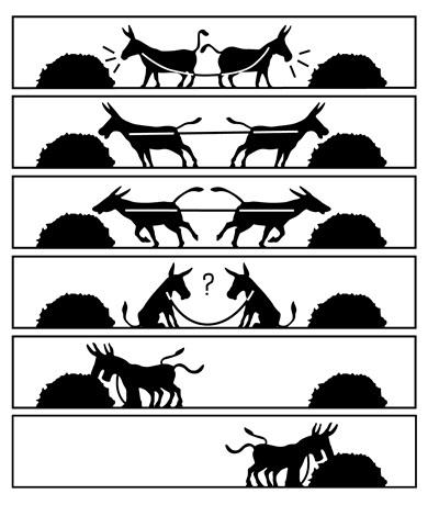 donkey-cooperation